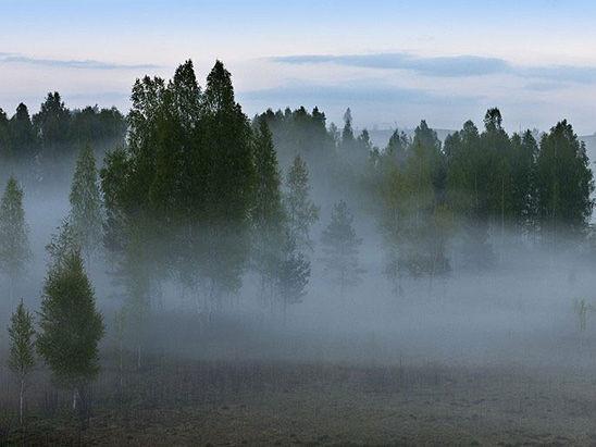 Необычные свойства воды. Образование тумана и облаков