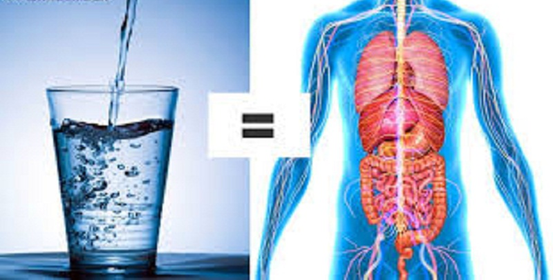 доставка бутилированной воды 19 л